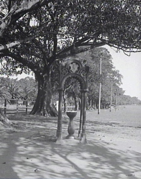 Moore Park 1930. Used with permission, Sydney Archives