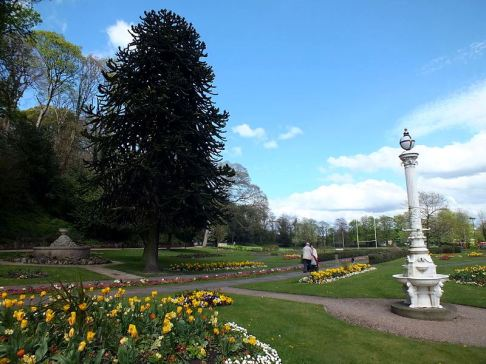 Creative Commons License, Clem Rutter. Source: https://en.wikipedia.org/wiki/Congleton#/media/File:Congleton_Park_2456.JPG